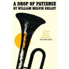 A Drop of Patience - William Melvin Kelley