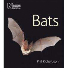 Bats - Phil Richardson