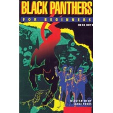 Black Panthers for Beginners - Herb Boyd & Lance Tooks