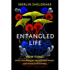 Entangled Life : How Fungi Make Our Worlds, Change Our Minds and Shape Our Futures - Merlin Sheldrake