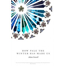 How Pale the Winter Has Made Us - Adam Scovell