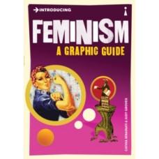 Introducing Feminism : A Graphic Guide - Cathia Jenainati