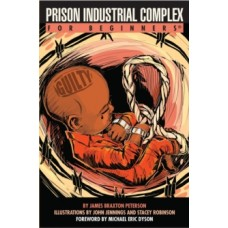 Prison Industrial Complex for Beginners - James Braxton Peterson,  John Jennings, Stacey Robinson