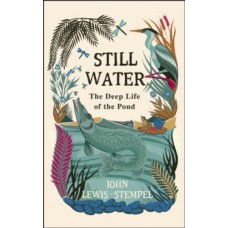 Still Water : The Deep Life of the Pond - John Lewis-Stempel