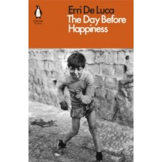 The Day Before Happiness - Erri De Luca