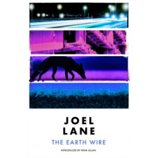 The Earth Wire - Joel Lane & Nina Allan (Introduction By)