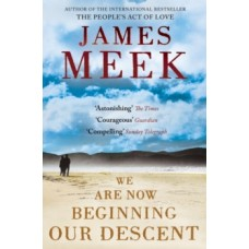 We Are Now Beginning Our Descent - James Meek