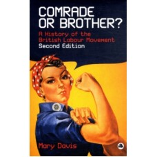 Comrade or Brother? : A History of the British Labour Movement - Mary Davis